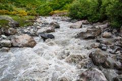 Rio da montanha Fotos de Stock Royalty Free