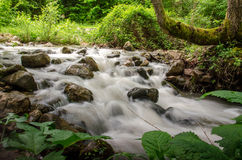 Rio da montanha Fotografia de Stock Royalty Free
