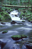 Rio da montanha Foto de Stock Royalty Free
