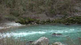 Rio da montanha com água azul clara na Abkhásia na mola adiantada vídeos de arquivo