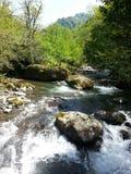 Rio da montanha da mola Fotografia de Stock