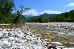 Rio da montanha da paisagem Imagem de Stock Royalty Free