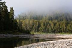 Rio da montanha do verão Rio Biya de Altay Imagem de Stock Royalty Free