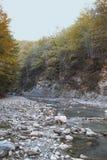 Rio da montanha em Lago-Naki imagem de stock