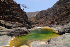 Ilha de Socotra Foto de Stock Royalty Free