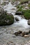 Rio da montanha na floresta do verão Fotografia de Stock