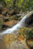 Rio da montanha na paisagem do outono da floresta imagens de stock