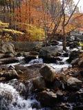 Rio da montanha na queda imagens de stock