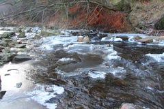 Rio da montanha no inverno Imagens de Stock