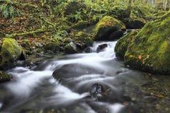 Rio da montanha no outono atrasado Fotografia de Stock Royalty Free