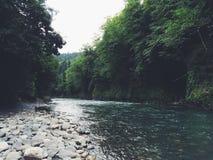 Rio da montanha Paisagem da montanha fotografia de stock