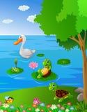 Rio da paisagem com animal Foto de Stock Royalty Free