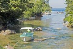 Rio da selva pelo Oceano Pacífico Imagem de Stock