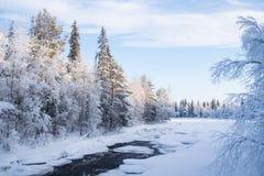 Rio da turfa de Raudanjoki no inverno fotografia de stock