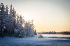 Rio da turfa de Raudanjoki no inverno imagem de stock