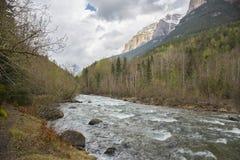 Rio de Arazas no parque nacional de Ordesa y Monte Perdido foto de stock royalty free