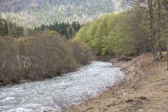Rio de Arazas no parque nacional de Ordesa y Monte Perdido imagens de stock royalty free