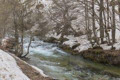 Rio de Arazas no parque nacional de Ordesa y Monte Perdido com neve foto de stock royalty free