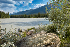 Rio de Athabasca em Canadá Fotos de Stock