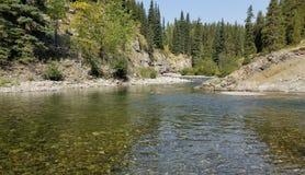 Rio de Backcountry em Alberta Imagens de Stock