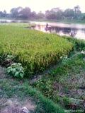 Rio de bangladesh fotografia de stock royalty free