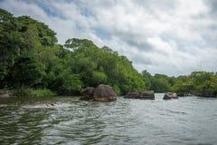 Rio de Bentota Imagem de Stock