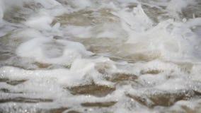 Rio de borbulhagem da montanha wildlife Um rio raging da montanha na primavera filme
