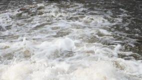 Rio de borbulhagem da montanha wildlife Um rio raging da montanha na primavera video estoque