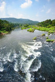 Rio de Chalakudy Imagens de Stock