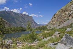 Rio de Chulyshman no vale das montanhas imagens de stock royalty free