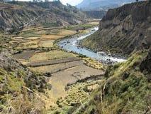Rio de Colca e campos cultivados, Peru fotos de stock