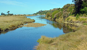 Rio de Collingwood e cidade, baía dourada Nova Zelândia Imagem de Stock
