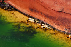 Rio de Colorado detail_01 Imagens de Stock Royalty Free