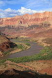 Rio de Colorado do enrolamento Fotografia de Stock