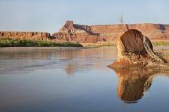 Rio de Colorado em Canyonlands Fotografia de Stock