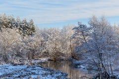 Rio de congelação no fundo de árvores cobertos de neve e do céu azul Paisagem ensolarada bonita do inverno Detalhe excelente foto de stock