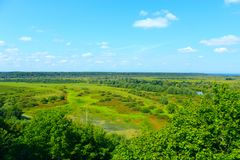 Rio de Desna com seus arredores pantanosos Fotografia de Stock