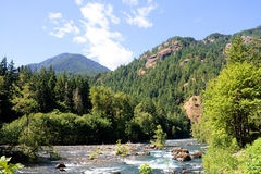 Rio de Elhwa, parque nacional olímpico, Washington Imagem de Stock