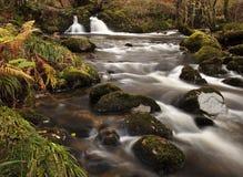 Rio de fluxo Imagem de Stock
