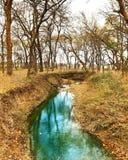 Rio de fluxo Fotografia de Stock Royalty Free