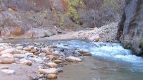 Rio de fluxo no tiro de Zion National Park Utah Panning filme