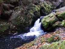 Rio de fluxo no vale Fotos de Stock Royalty Free