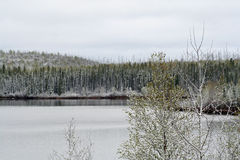 Rio de Geikie em Saskatchewan Fotos de Stock