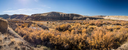 Rio de Gunnison no Condado de Delta, Colorado foto de stock royalty free