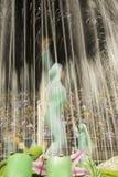 Rio de Janeiro Brazil Carnival Royalty Free Stock Photos