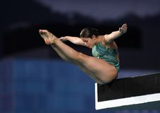 Diving in the Olympic Games 2016. Rio de Janeiro-Brazil , diving in the Olympic Games 2016 Stock Images