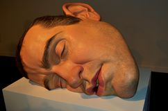 Rio de Janeiro, Brazil - March 30, 2014: Mask II, a sculpture by the Australian hyperrealist sculptor, Ron Mueck, at the Museum of. Modern Art, Rio de Janeiro stock images
