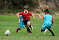 Catalunya Soccer Cup. Rio de Janeiro, Brazil, September 5, 2015. Soccer matches played during the Catalunya Soccer Cup, held at the FCBEscola training center, in royalty free stock images