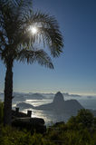 Rio de Janeiro Brazil Sunrise Palm Tree Sugarloaf Mountain Royalty Free Stock Photos