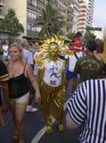 Rio de Janeiro Carnival Royalty Free Stock Photos